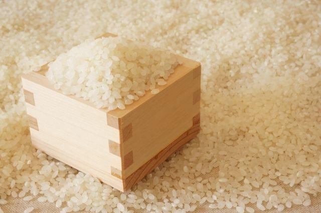 なぜトマトより米は安く売られているのか