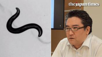 Power of nematode worm: Interview with Takaaki Hirotsu, CEO of Hirotsu Bio Science