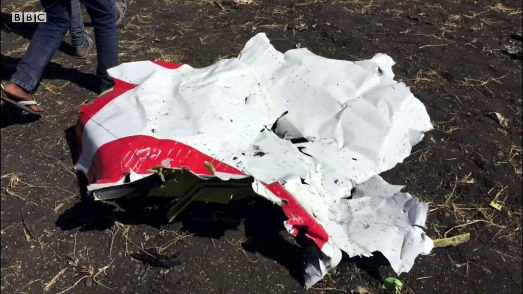 生存者ゼロ……エチオピア航空機の墜落現場