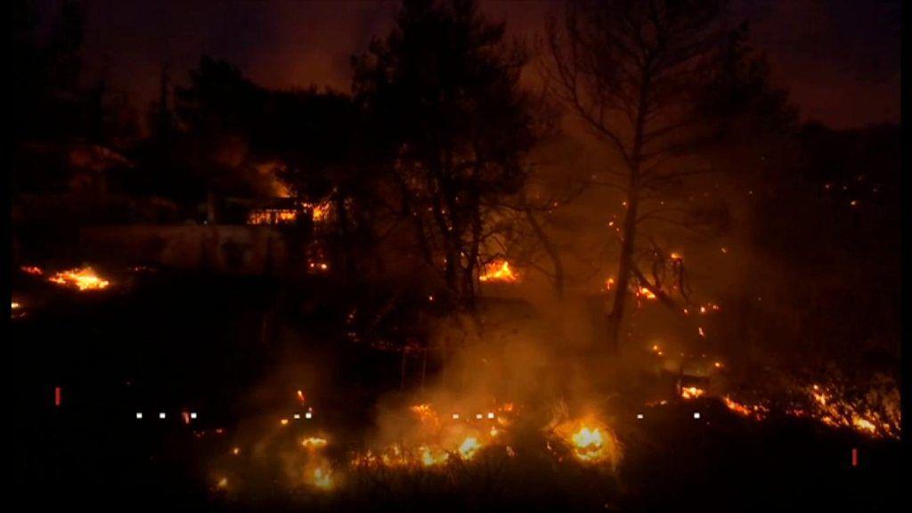 ギリシャ森林火災 「炎から逃げて海に飛び込んだ」