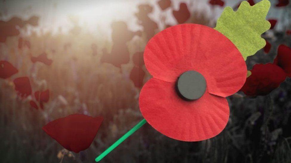 複雑な「けしの花」 英国の戦没者追悼シンボルをつける人とつけない人