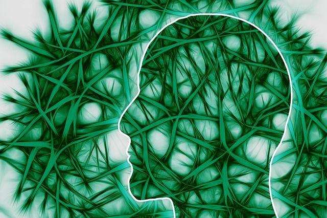 AIを賢くするニューラルネットワークの仕組み