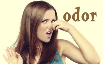 #128: odorの用法/reverse vending machineって何?(ボキャビル・カレッジ・第128回)