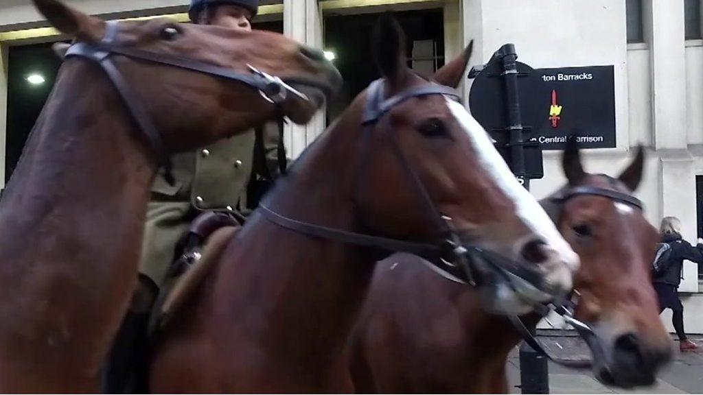 ロンドンの街中を馬70頭が行進、王立騎馬砲兵隊の日常