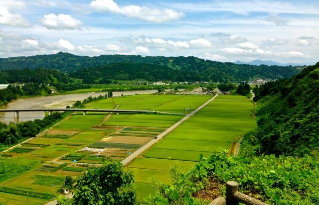 """歴史は繰り返す? """"荘園""""化する日本の農業"""