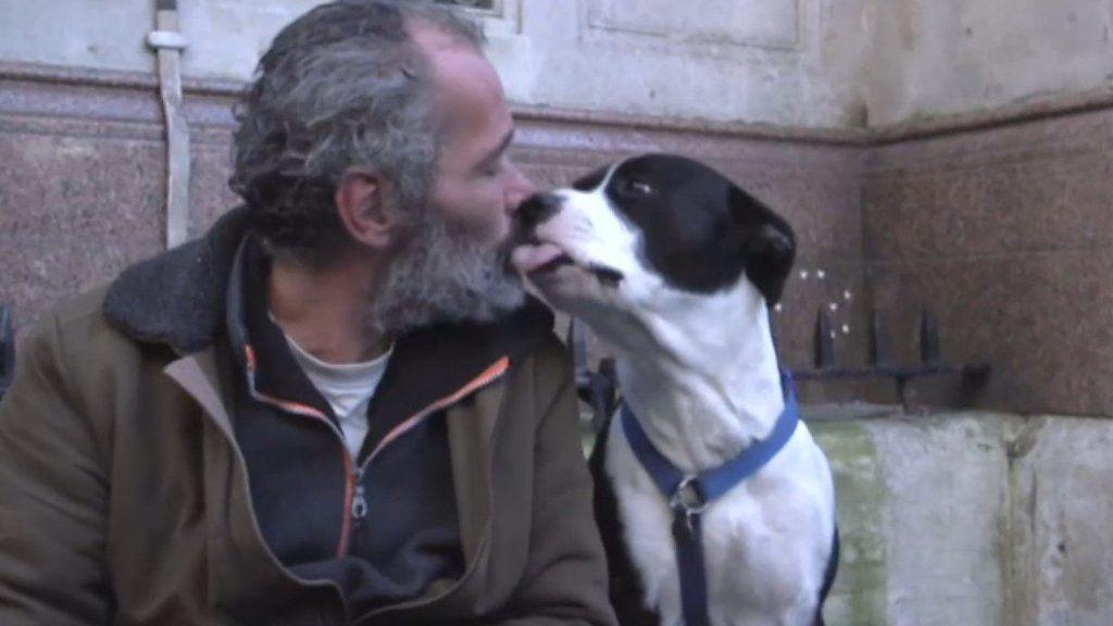 家族で親友……ホームレスの愛犬を治療する獣医師