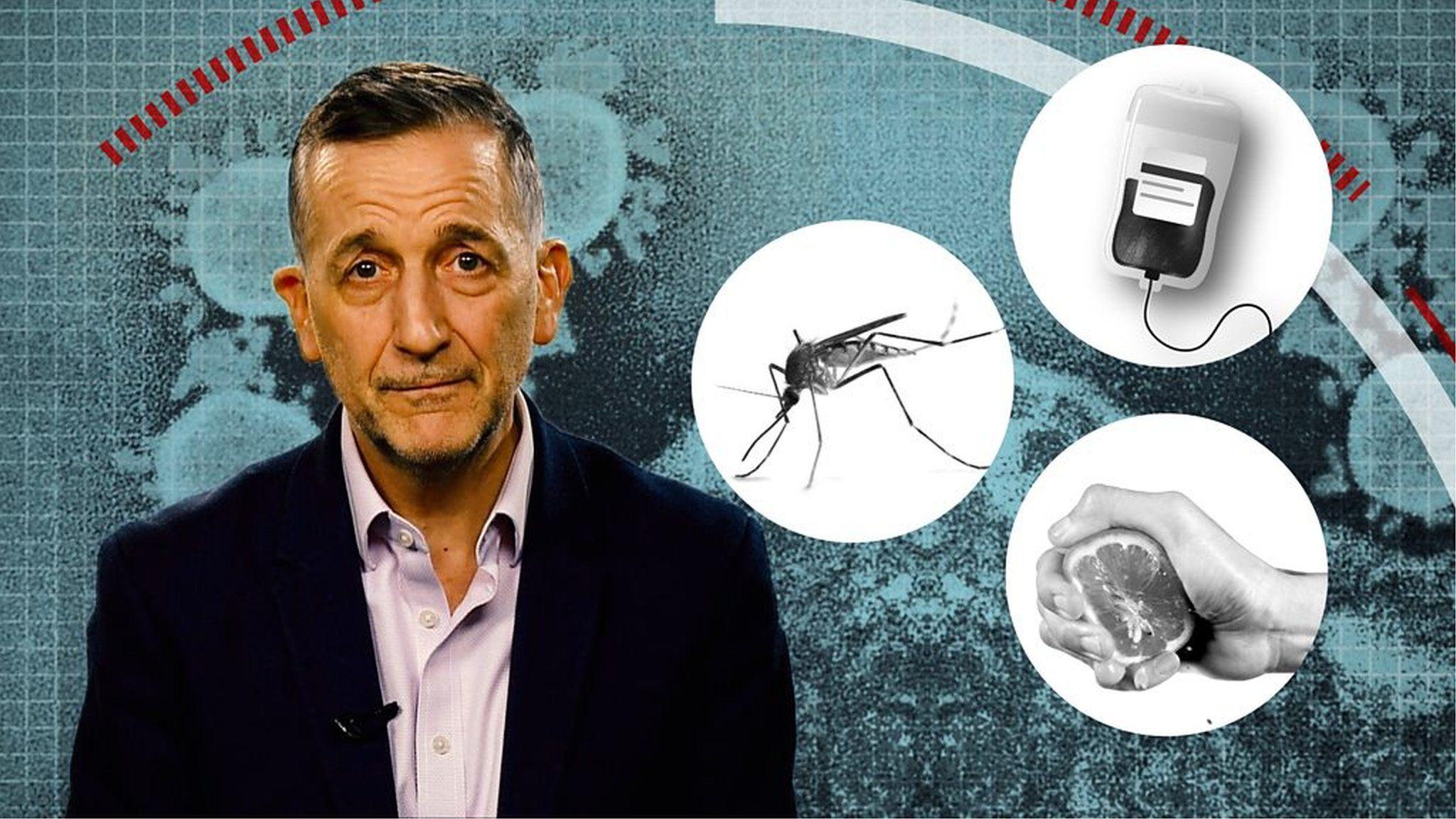 「レモン果汁で予防」「蚊に刺されて感染」? 新型ウイルスにまつわるニセ情報