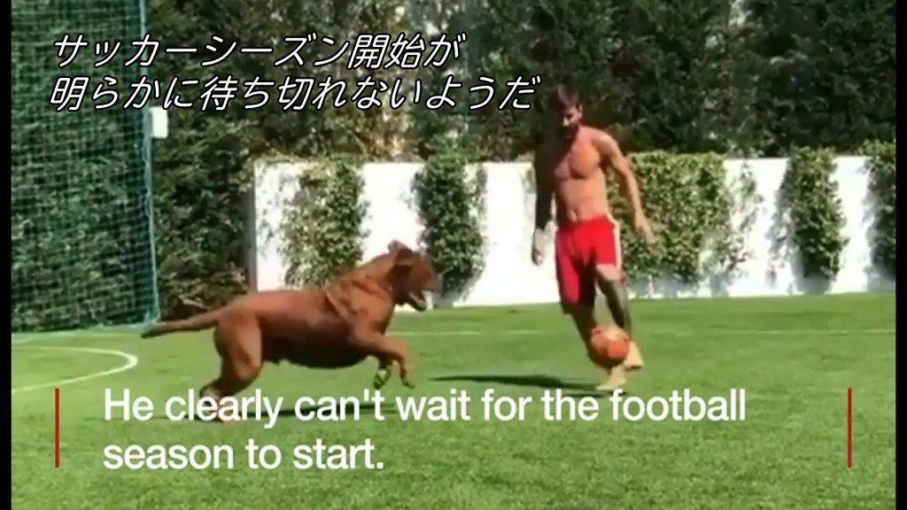 メッシ、愛犬とサッカー 決してボール取られず