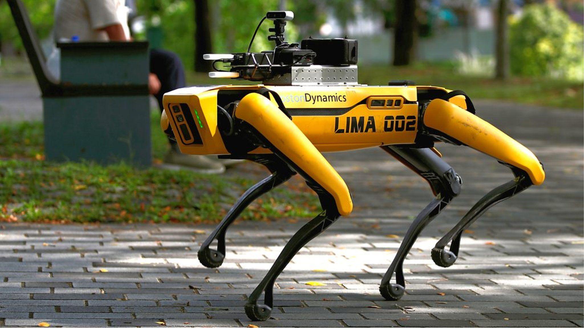 「1メートル離れて」、ロボット犬が混雑状況を監視 シンガポールで実証実験