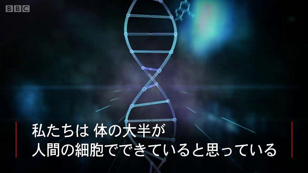 人体の半分は人間じゃない?マイクロバイオームの世界