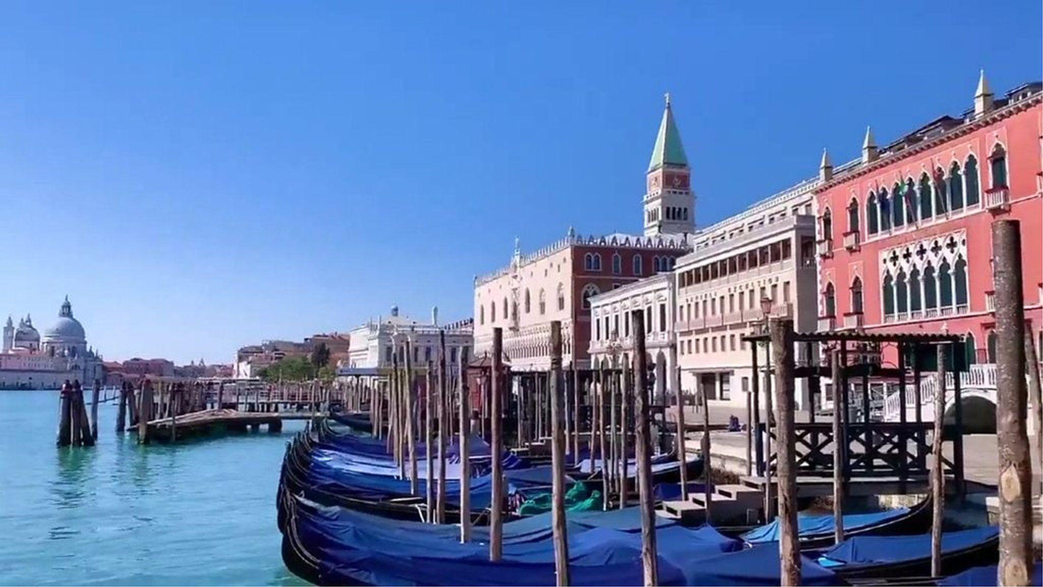 ヴェネツィアの水路、透明に 新型ウイルスによる封鎖措置が影響か