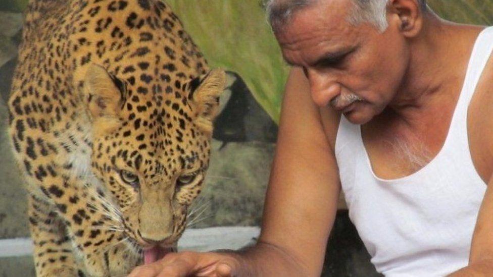 ヒョウやクマと一緒に生活 インドの野生動物「孤児院」
