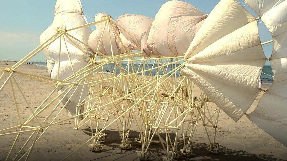 海岸を風で歩く「ビースト」 将来は金星でも?
