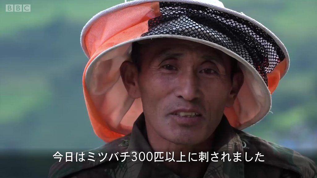 命をかけてヒマラヤの絶壁を登る、ネパールのハチミツ採り